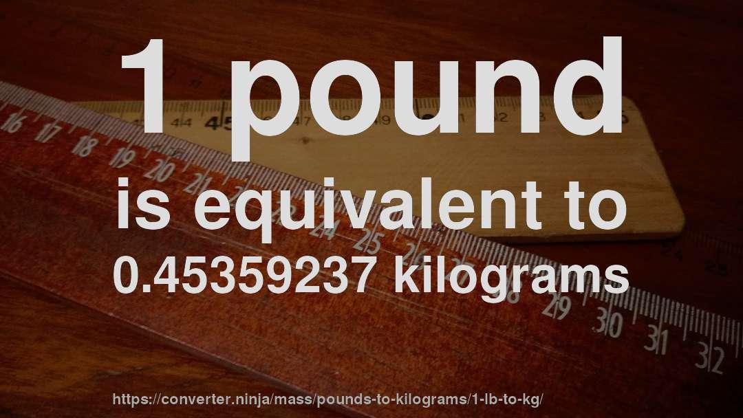 1 pound kg conversion