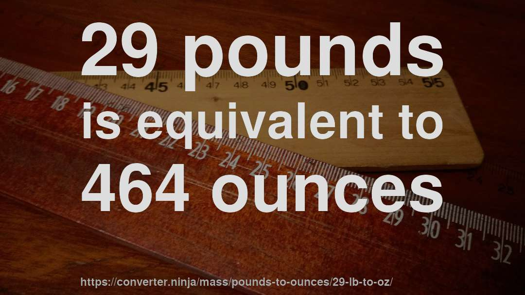 29 Lb To Oz How Much Is Pounds In