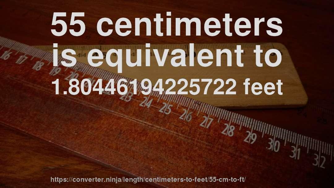 55 feet in cm
