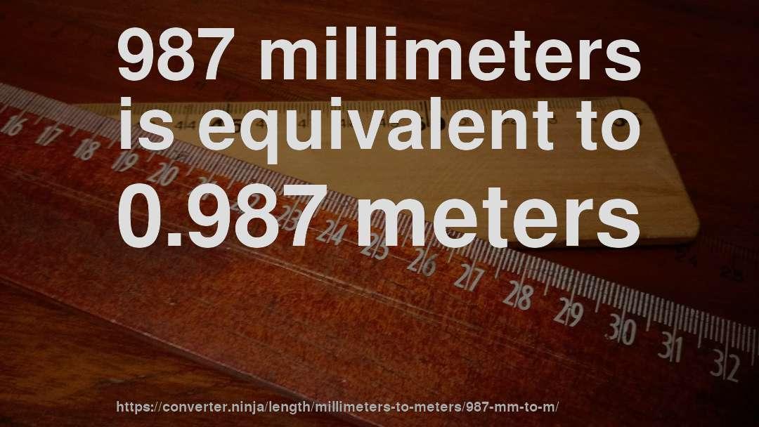 987 Mm To M How Long Is 987 Millimeters In Meters Convert